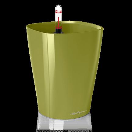Саксии и кашпи за озеленяване