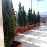 озеленяване на тераса