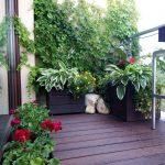 озеленяване и поддръжка на растения