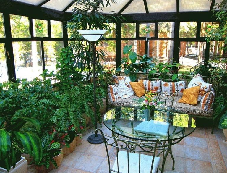 Функционалност на зимната градина. Растителни видове на топла и студена зимна градина.