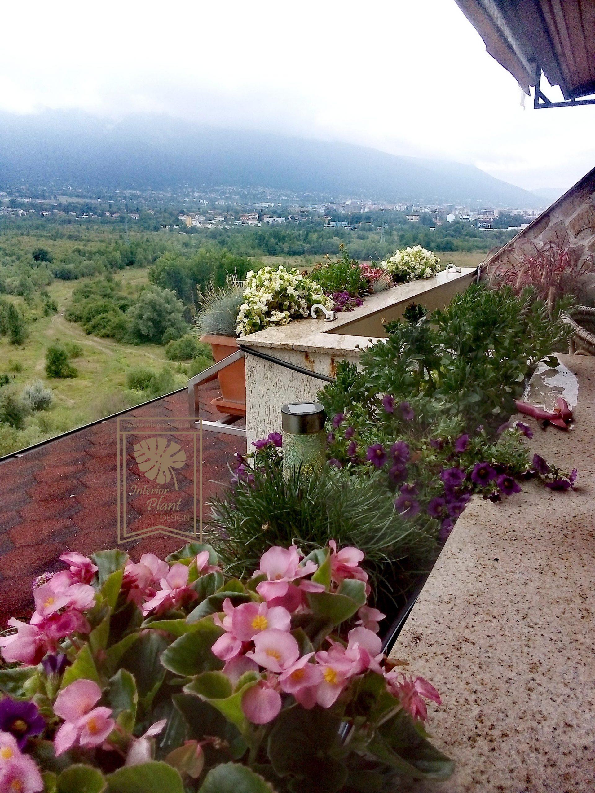 Озеленяване на тераси и балкони